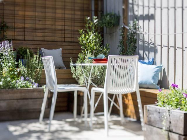 3 Bellevue Avenue, Paddington, NSW 2021