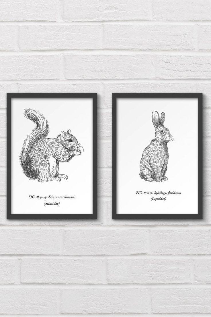 Free printable woodland animal wall art Purchase a lot