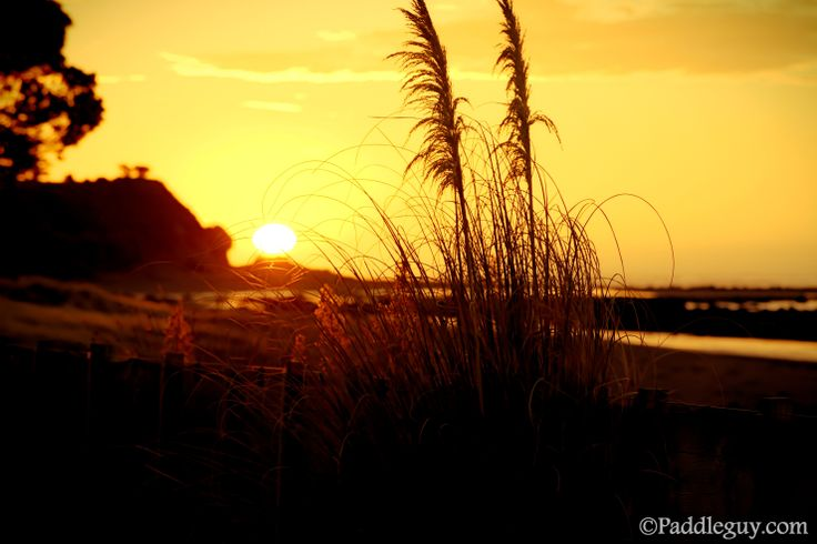One of my favourite pics of the Sunset at Oakura beach holiday park, taken on Nikon D5200