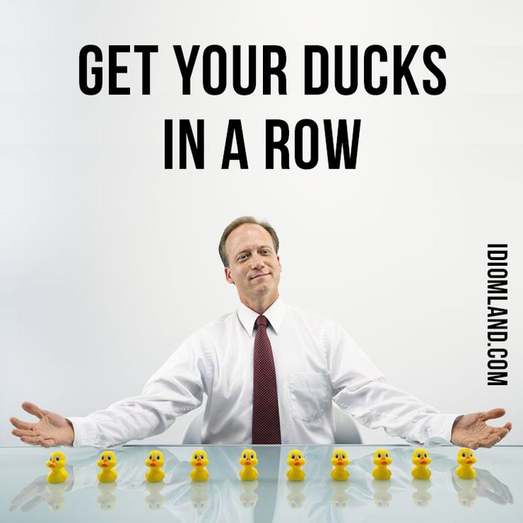 "Hello everybody! Our #idiom of the day is ""get your ducks in a row"", which means ""to be well organized"". This American expression (nowadays it seems to be common throughout the English-speaking world) is thought to have arisen by allusion to a mother duck leading her ducklings in an orderly single file. #english #idioms #englishidioms #ducksinarow"