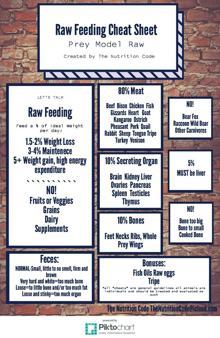 Raw Feed Guidelines Raw Dog Food Recipes