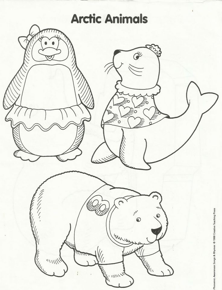 Coloring Winter Animals : 81 best domestic animals coloring pages images on pinterest