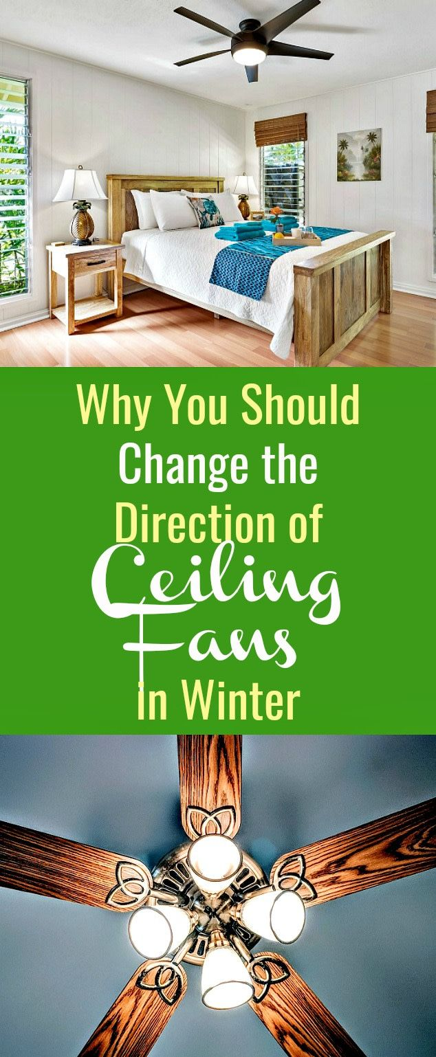 Why You Should Change The Direction Of Ceiling Fans In Winter