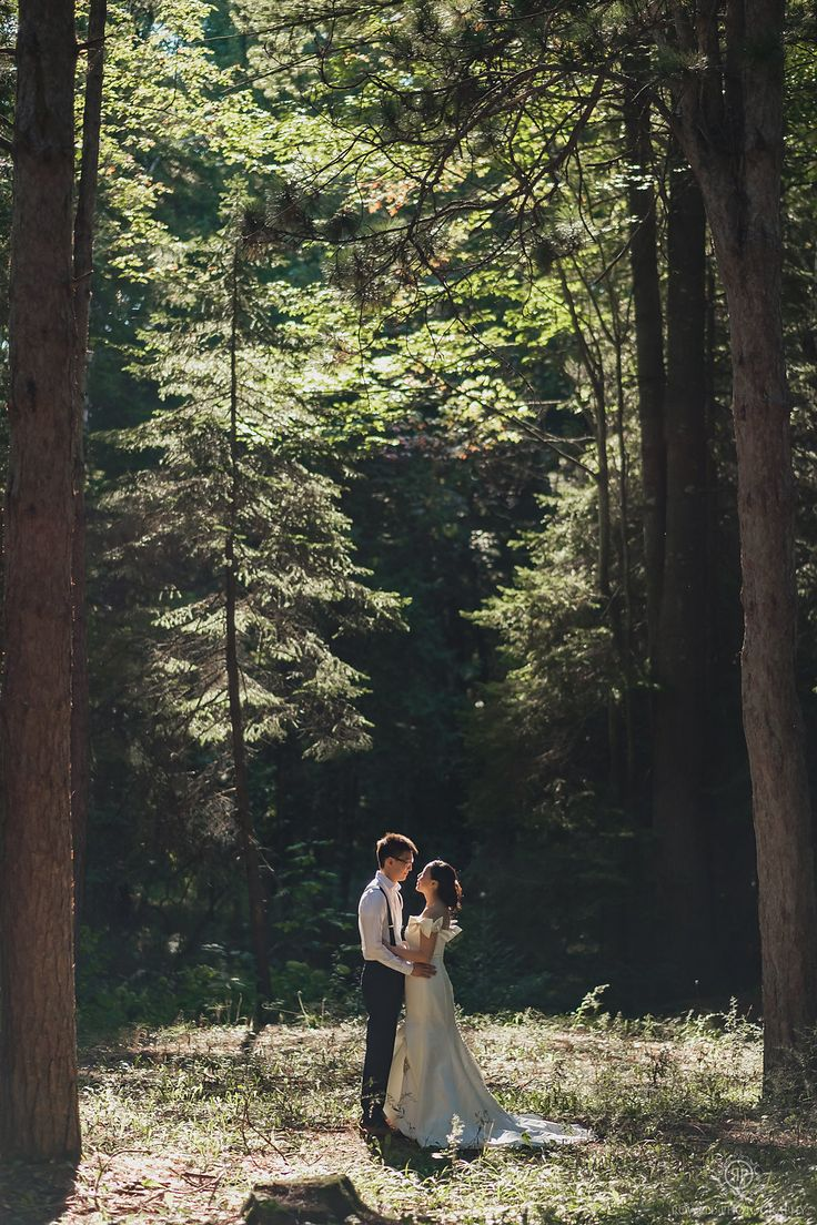 pre-wedding forest photos