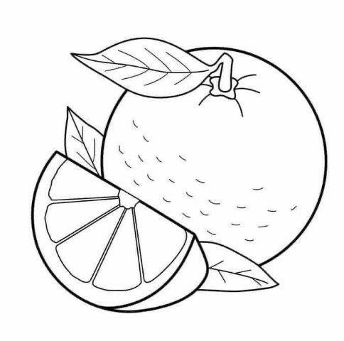 Verduras Para Pintar Con Imagenes Dibujos De Frutas Verduras