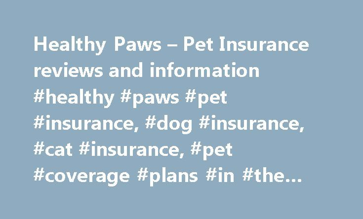 Healthy Paws – Pet Insurance reviews and information #healthy #paws #pet #insurance, #dog #insurance, #cat #insurance, #pet #coverage #plans #in #the #us #& #canada http://claim.nef2.com/healthy-paws-pet-insurance-reviews-and-information-healthy-paws-pet-insurance-dog-insurance-cat-insurance-pet-coverage-plans-in-the-us-canada/  # 10/10 I don't know where we'd be without Healthy Paws, 5/19/2017 Reviewed By: Jenni Grubba, Recommend: Y From the moment I brought Charles home, I knew I would do…
