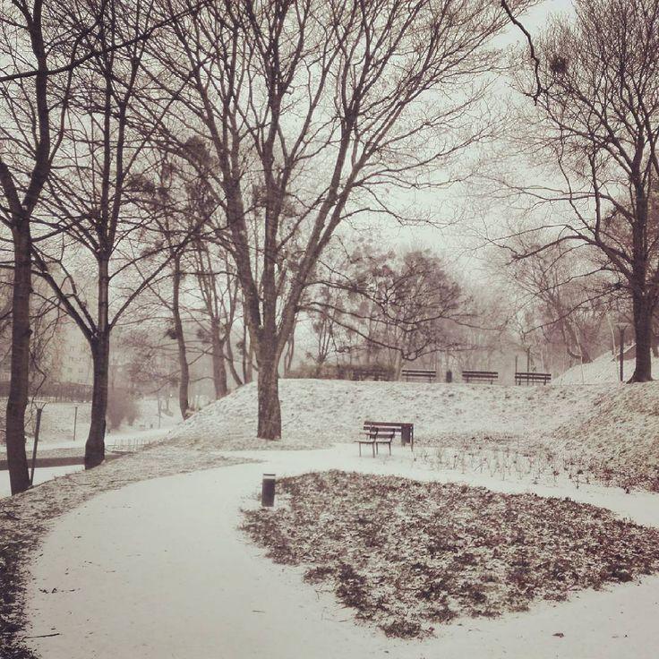 Ponoć jak jest zima to musi być zimno o to raczej się już nie musimy martwić nareszcie spadł piękny biały puch... i Gdańsk zasypany :)