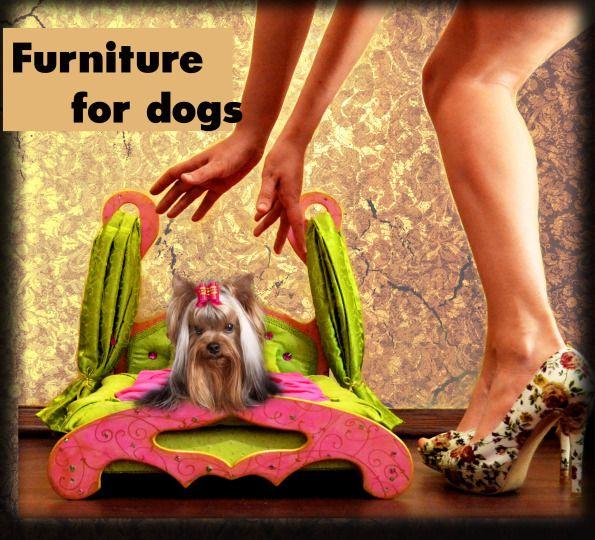 Власова Виктория Дизайнер мебель для собак лежанки для маленьких  пород