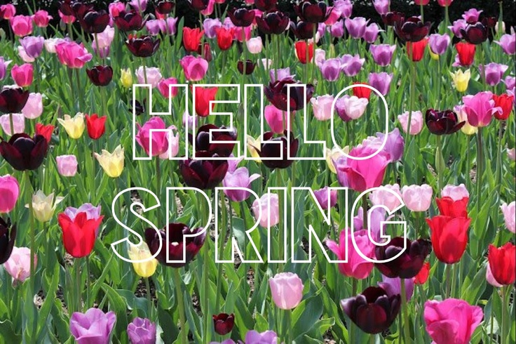 Spring is here! <3 by TheBellJar.nl