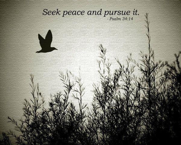 Seek peace and pursue ...
