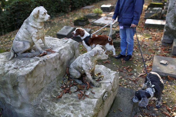 Кладбище для домашних животных в Париже « FotoRelax