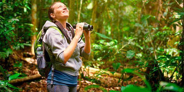Birdwatching no Acre: a biodiversidade da nossa fauna é ecoturismo
