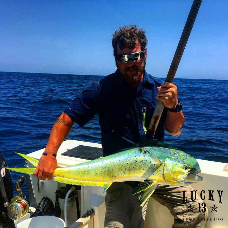 8 best offshore fishing in north carolina images on for Nc deep sea fishing charters