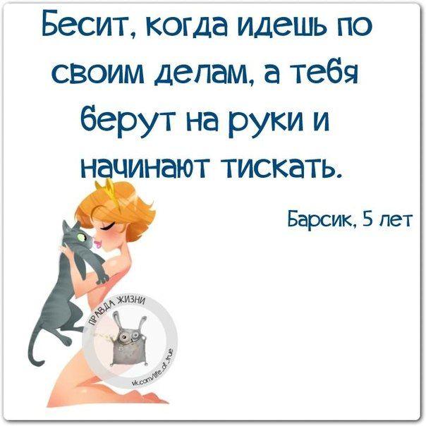 Веселые фразки в нескучных картинках :) 25 фразочек