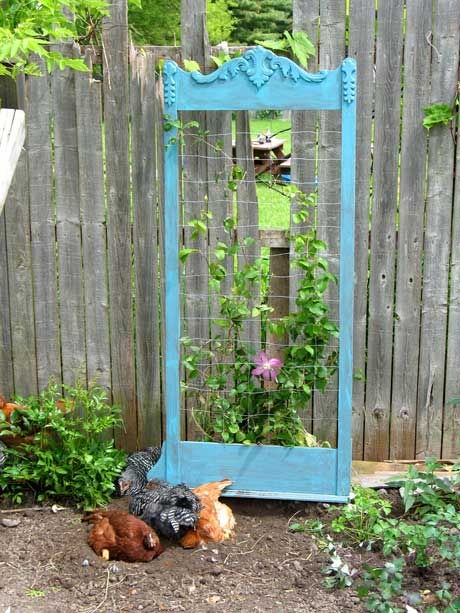 Wooden mirror frame is used to create a trellis for a Clematis Vine #gardenchat #repurpose Photo uploaded by tasymo on photobucket.
