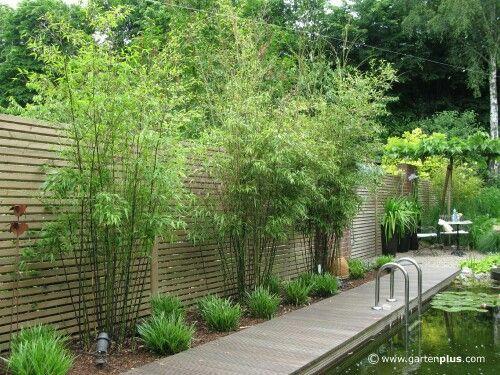 sch ner sichtschutz zahony pinterest gardens garden ideas and fences. Black Bedroom Furniture Sets. Home Design Ideas