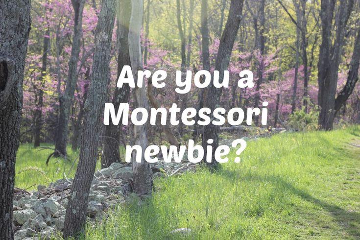 Are you a Montessori newbie? {Montessori Mischief blog}