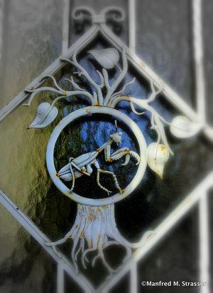Sehenswürdigkeiten, die beigetragen haben, dass die Stadt Graz mit ihrer historischen Altstadt und dem Schloss Eggenberg zum UNESCO-Weltkulturerbe gehört. Große Bauwerke, aber auch kleine Details, wie Türen, Tore und Beschläge! Danke an Manfred M. Strasser für die Bilder. #Sehenswürdigkeiten #Stadt #Graz #historische #Altstadt #Schloss #Eggenberg #UNESCO-#Weltkulturerbe # Bauwerke #Türen #Tore #Beschläge