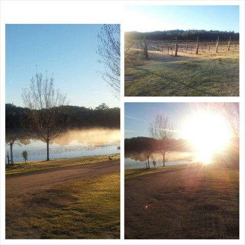 #HiddenCreekVineyard early morning #winter #2013 #GraniteBelt