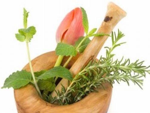 I rimedi naturali da evitare durante la gravidanza. Cade che la convinzione che le erbe officinali possono essere usate sempre, perchè naturali. http://www.arturotv.tv/gravidanza/erbe-in-gravidanza