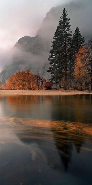 November Rain. Yosemite Village, CA, November 2012 // photo by Joe Ganster