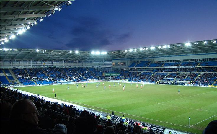 176 Best Cardiff City Fc Images On Pinterest