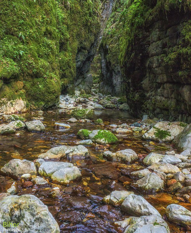 Valea Sighiștelului | Bihor in imagini