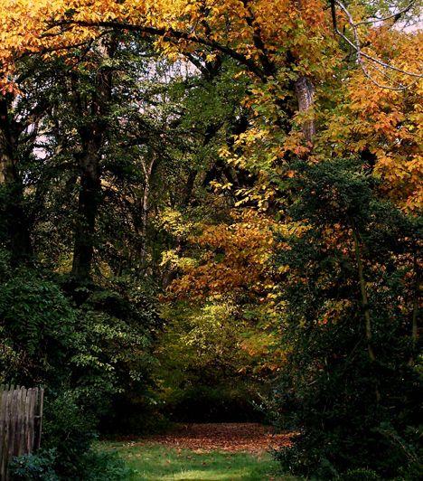 Szarvasi Arborétum | femina.hu