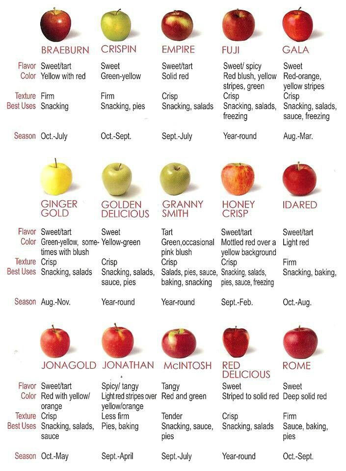 Apple Guide
