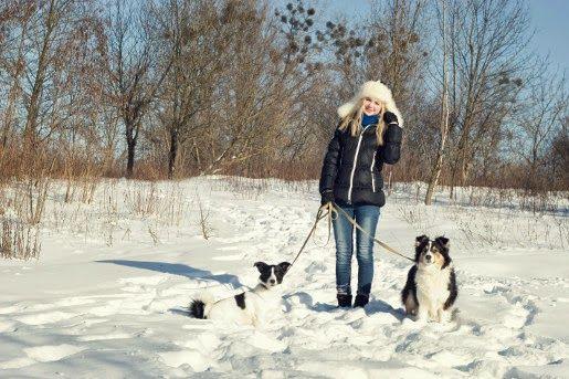 Jak chronić psie łapy zimą?