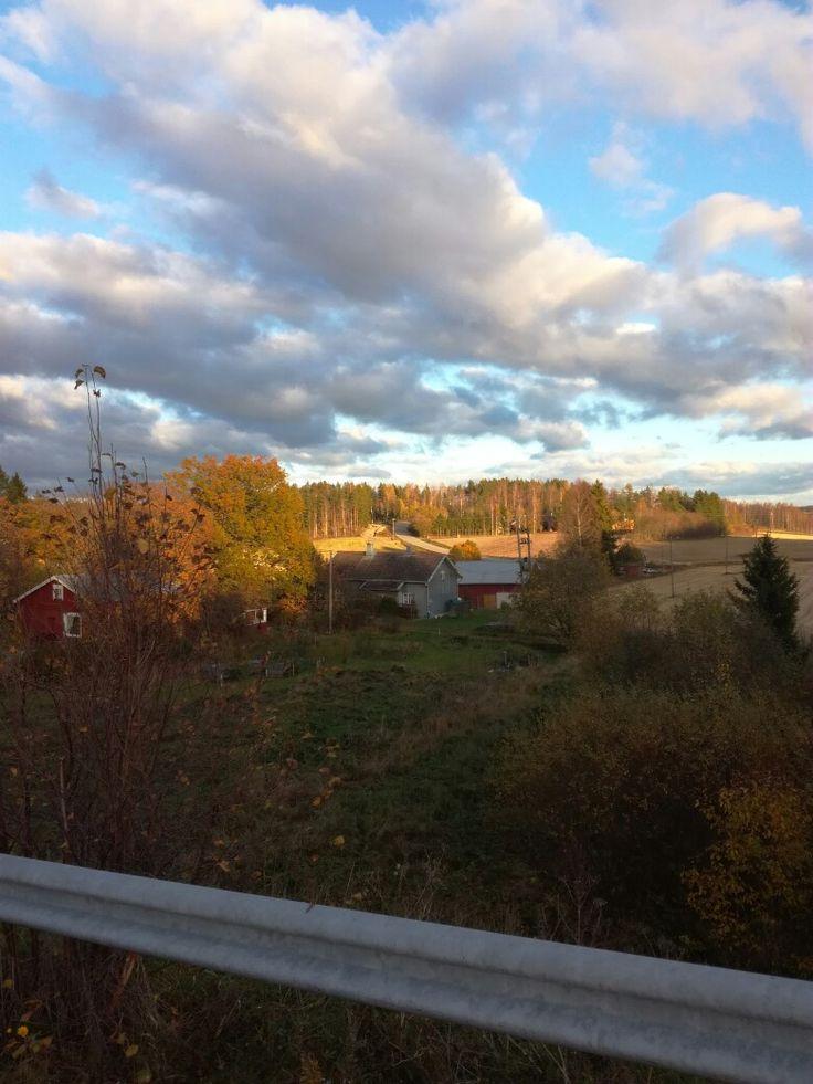 Finland, Hajala. Last year autumn. (2016)
