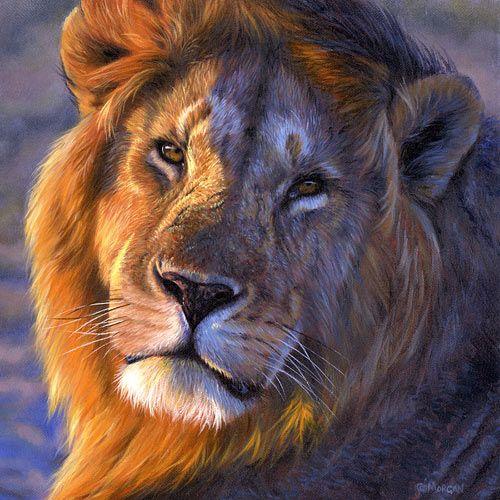 Original painting By Jason Morgan, International Wildlife Artist.  The face tells the story.