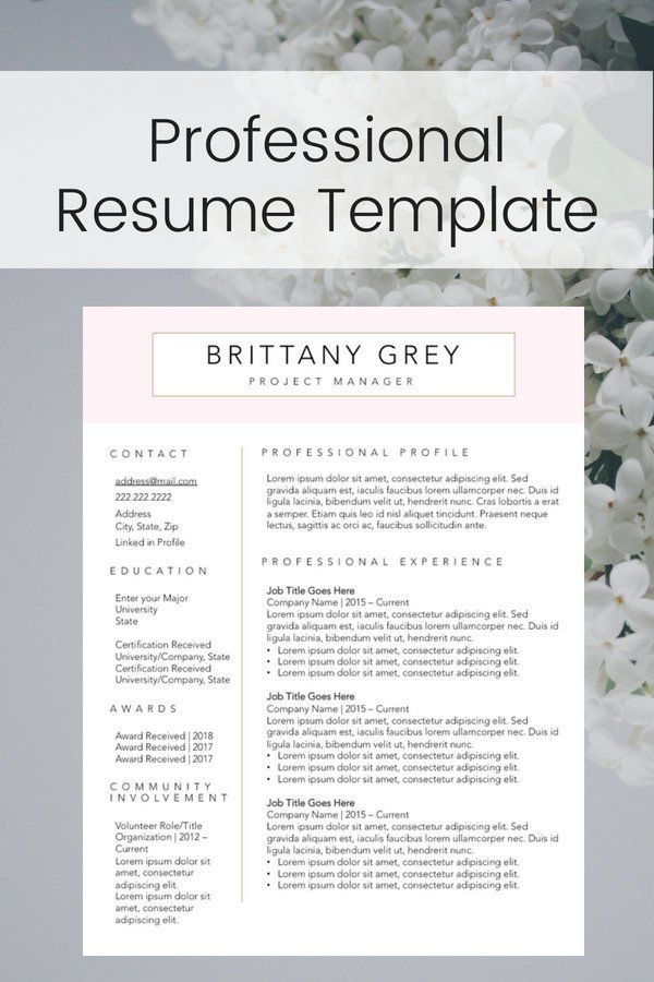 Pink And Gold Resume Design Chic Professional Profile Work