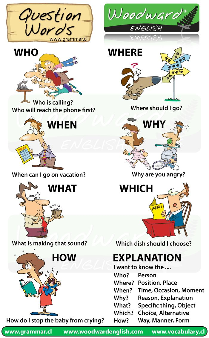 Who what when where why how chart chart with question words in english using cartoons