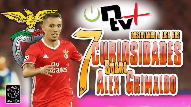 7 Curiosidades sobre Alex Grimaldo | Observando a Liga Nos | ON tv Mais