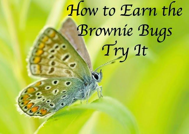 How to Earn Brownie Badges and Try Its: How to Earn the Brownie Bugs Badge