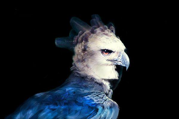 44 best the tempest ariel images on pinterest mermaids - Harpy eagle hd wallpaper ...