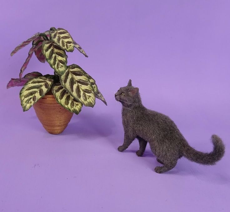Jupiter a OOAK Unique Realistic Handmade Miniature Dark Grey Cat Sculpture 8 best Miniature Dollhouse