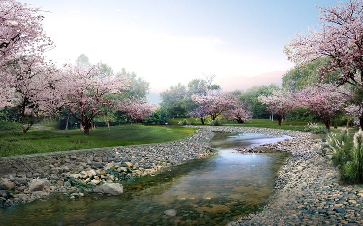 Beautiful Spring Trees | Windows 8 Wallpaper HD