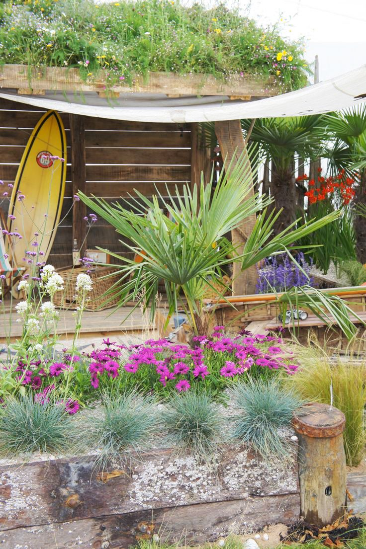 40 best Beach scape images on Pinterest | Seaside garden, Beach ...
