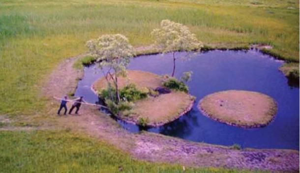 A floating island—can such a thing exist? Can the chunks of the solid earth on which we stand drift easily about the surface of a body of water? The idea of a floating island seems impossible, s