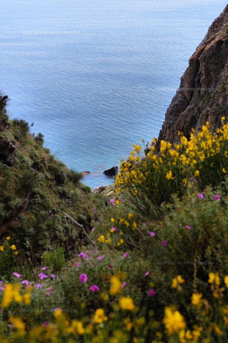 Baia della Pelara, Foto Ischia, Paesaggi Ischitani, Sentieri di Ischia, Baie di Ischia, trekking Ischia,