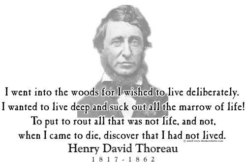 "antithesis thoreau where i lived and what i lived for Library excerpt from walden: ""where i lived and what i lived for."