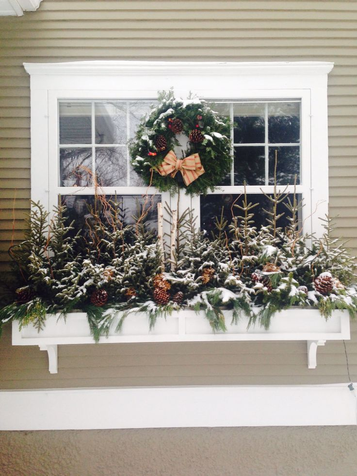 Minneapolis window boxes Spruce tops 13 best