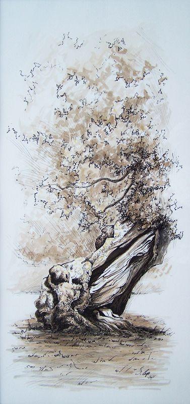Pittore e Fotografo del Salento. L'arte della pittura e della fotografia. SIMONA COMI