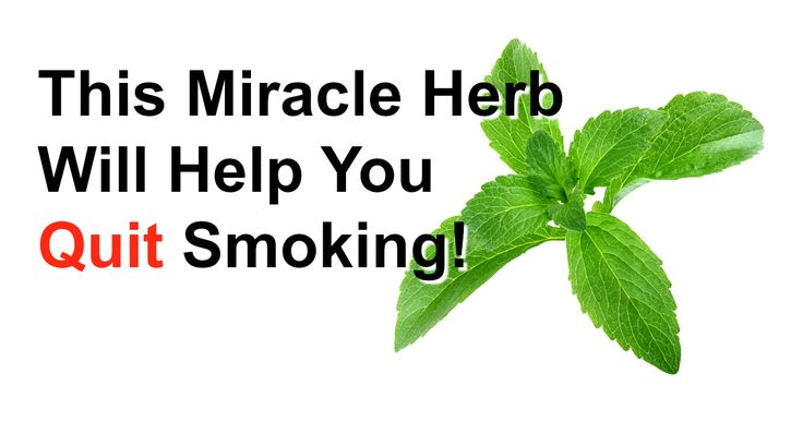 Want To Quit Smoking? This Herb Instantly Destroys Your Desire For Nicotine