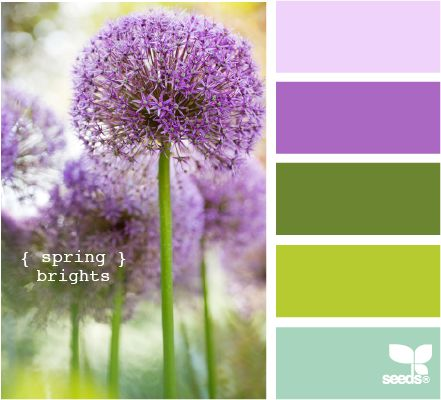 nature the best inspiration for colour palettes choosing