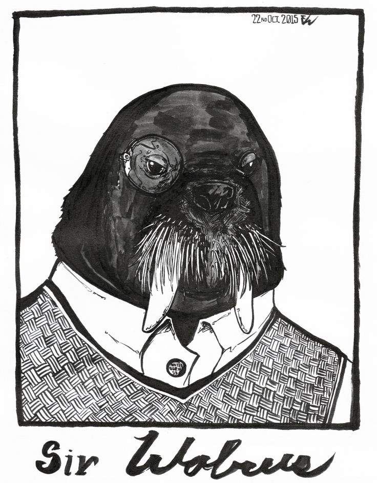 #inktober2015 -22- Meet Sir Walrus, yeah, he looks like he disapproved of most things, but really, he is just thinking about the content of his next meal.