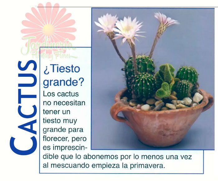 37 best Abonos y Fertilizantes images on Pinterest | Compost ...