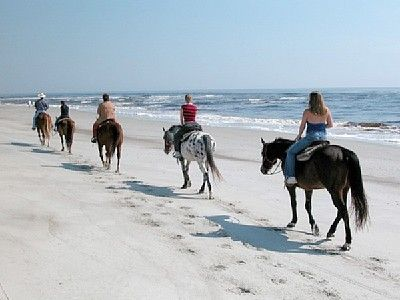I've always wanted to do thisBuckets Lists, Years Ago, Islands States, Horses 3, Amelia Islands, Jacksonville Fl, Beach Riding, Horseback Riding On The Beach, Horses Riding